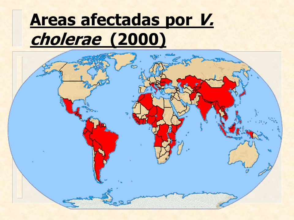 Areas afectadas por V. cholerae (2000)