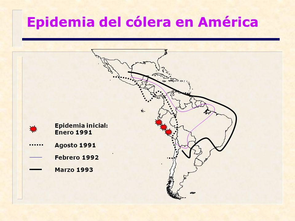 Epidemia del cólera en América