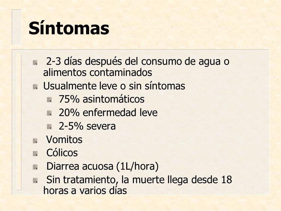 Síntomas Usualmente leve o sin síntomas 75% asintomáticos