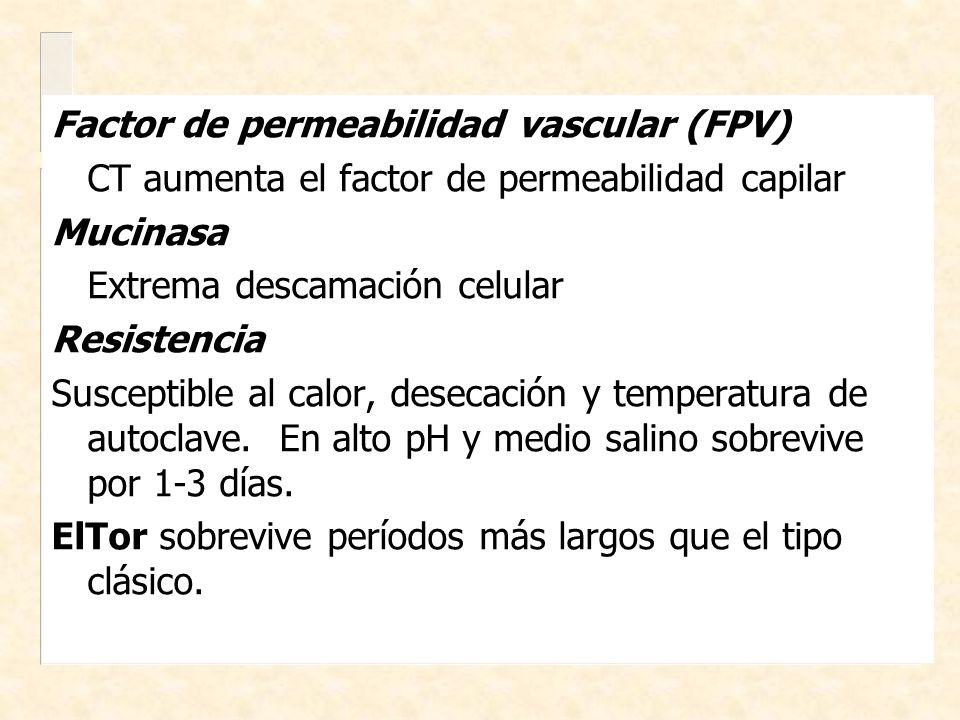 Factor de permeabilidad vascular (FPV)