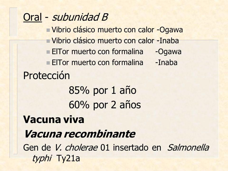Oral - subunidad B Protección 85% por 1 año 60% por 2 años Vacuna viva