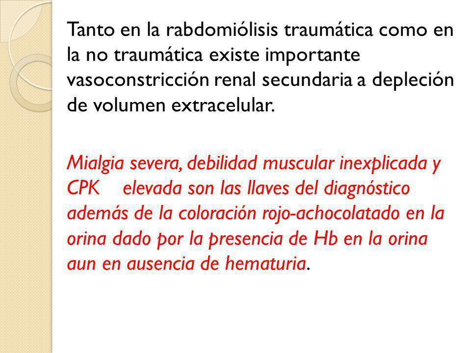 Tanto en la rabdomiólisis traumática como en la no traumática existe importante vasoconstricción renal secundaria a depleción de volumen extracelular.