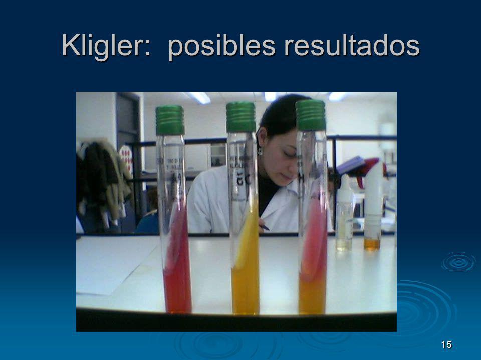 Kligler: posibles resultados