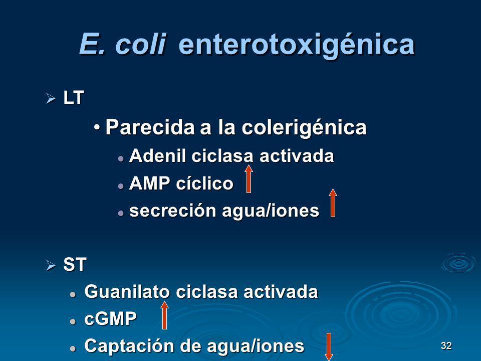 E. coli enterotoxigénica