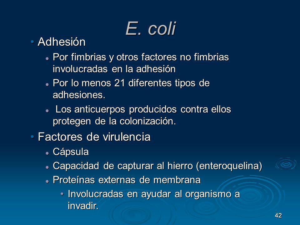 E. coli Adhesión Factores de virulencia