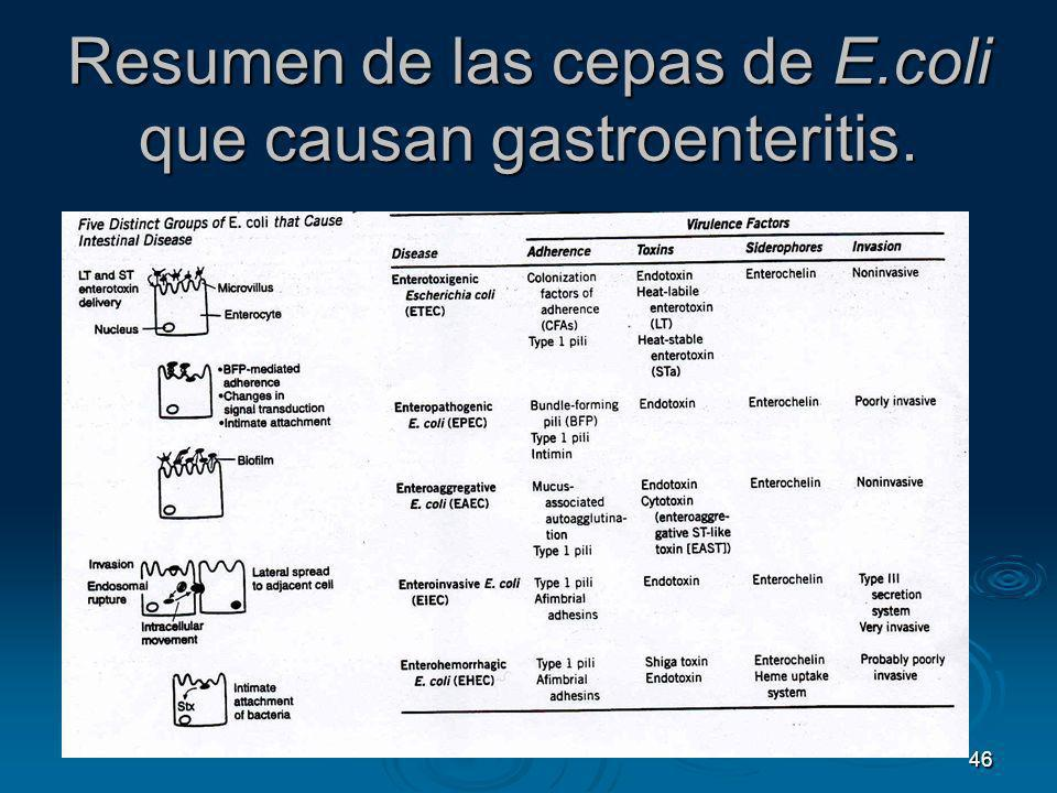 Resumen de las cepas de E.coli que causan gastroenteritis.