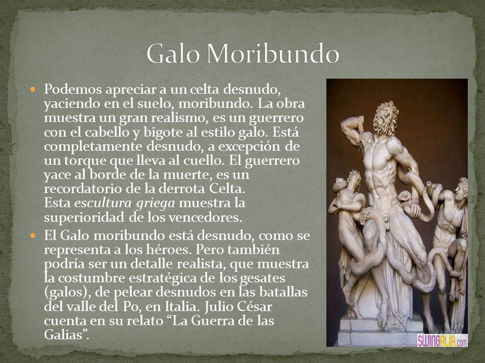 Galo Moribundo