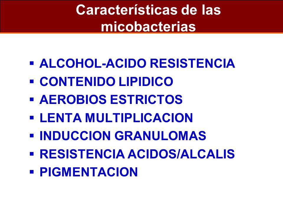 Características de las micobacterias