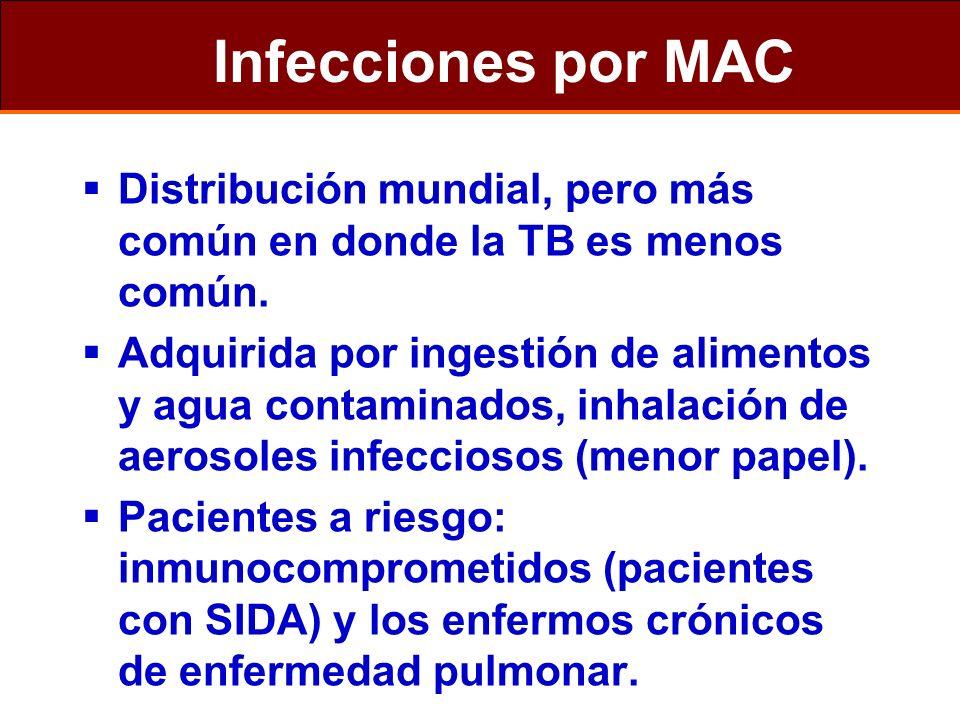 Infecciones por MAC Distribución mundial, pero más común en donde la TB es menos común.