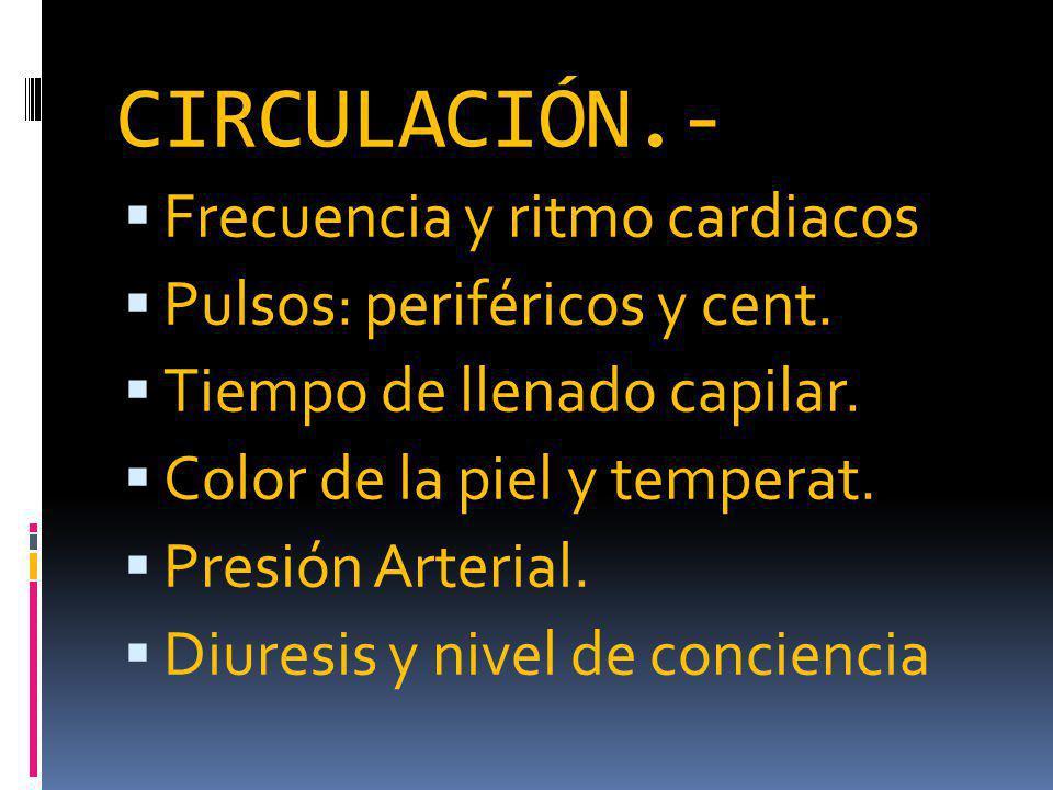 CIRCULACIÓN.- Frecuencia y ritmo cardiacos Pulsos: periféricos y cent.
