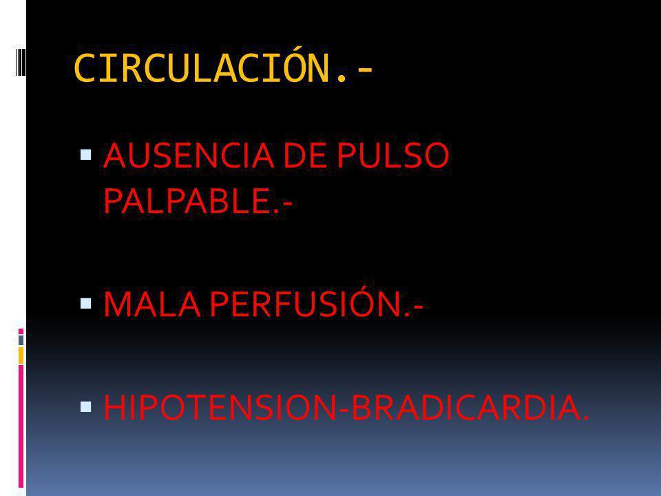 CIRCULACIÓN.- AUSENCIA DE PULSO PALPABLE.- MALA PERFUSIÓN.-