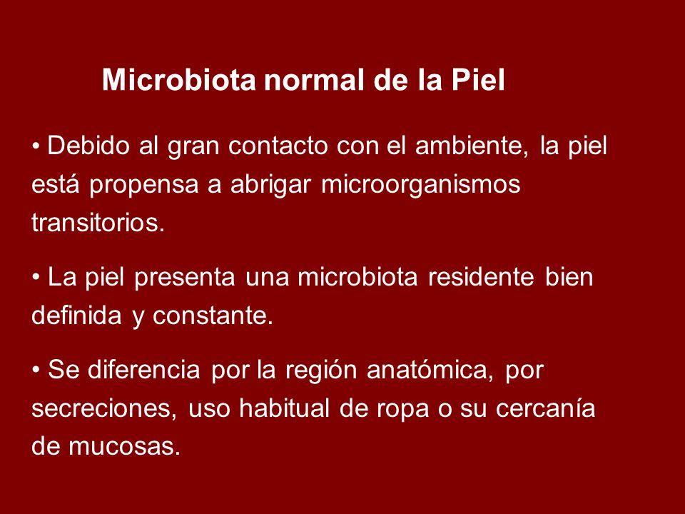 Microbiota normal de la Piel
