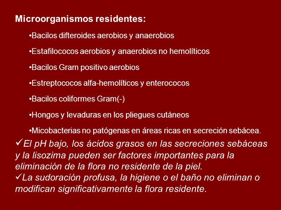 Microorganismos residentes: