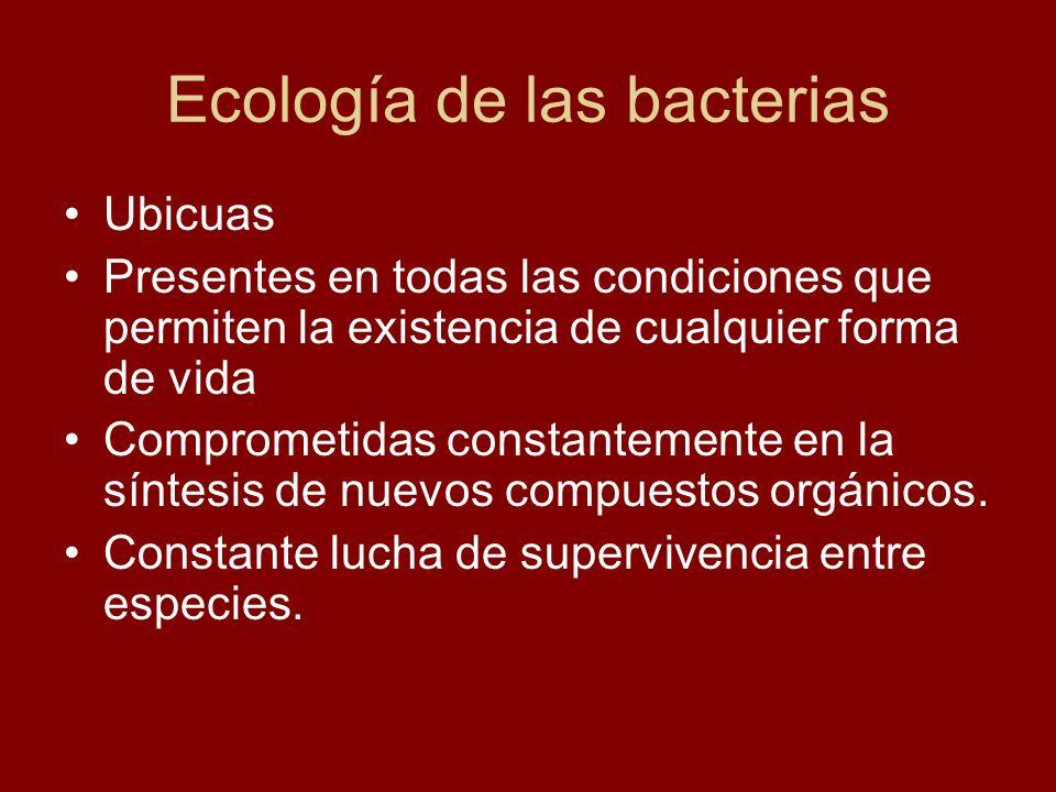 Ecología de las bacterias
