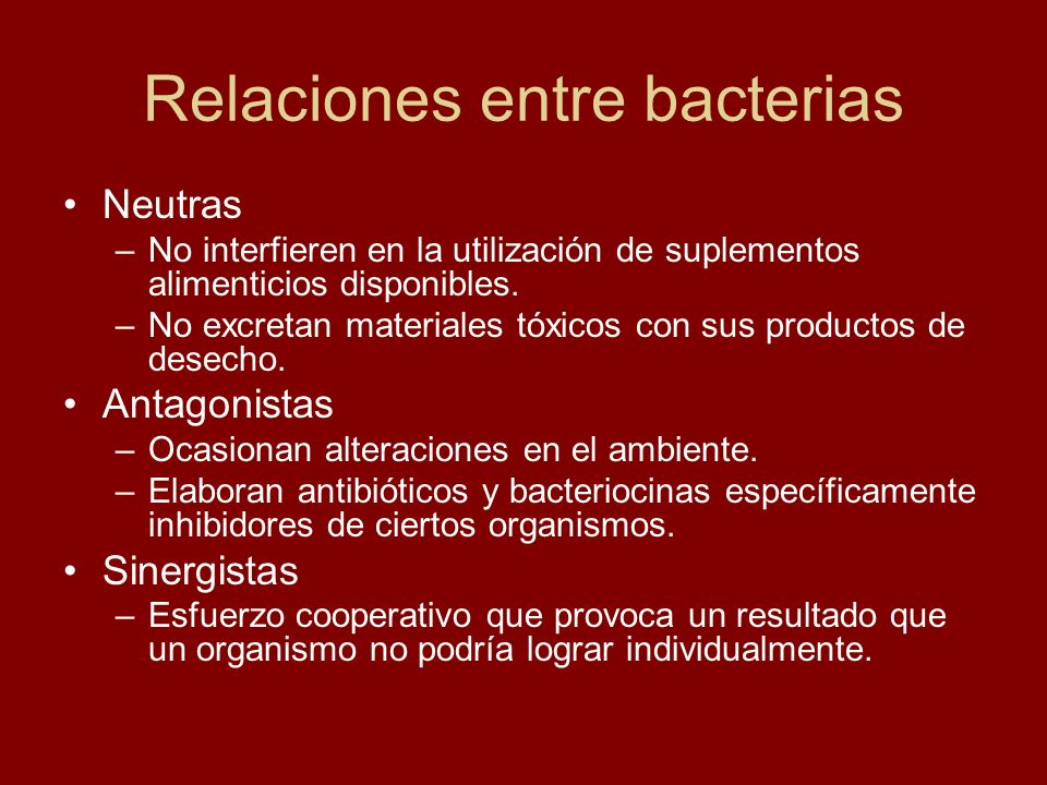 Relaciones entre bacterias