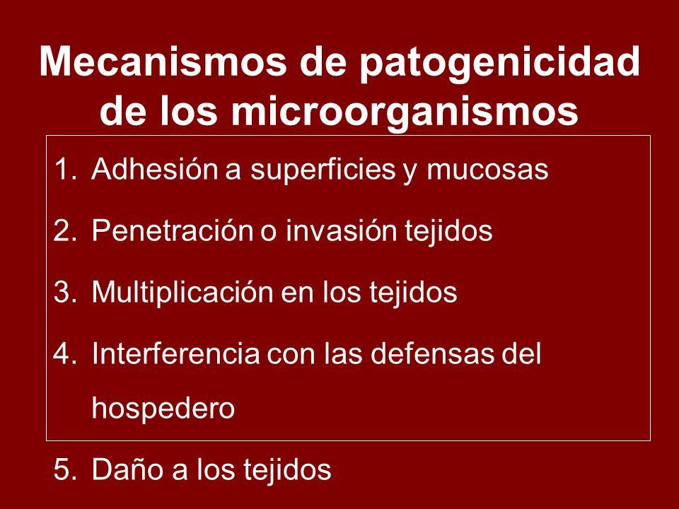 Mecanismos de patogenicidad de los microorganismos