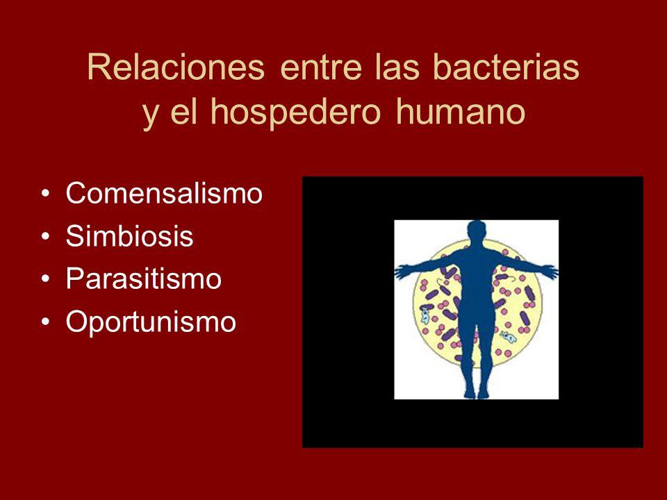 Relaciones entre las bacterias y el hospedero humano