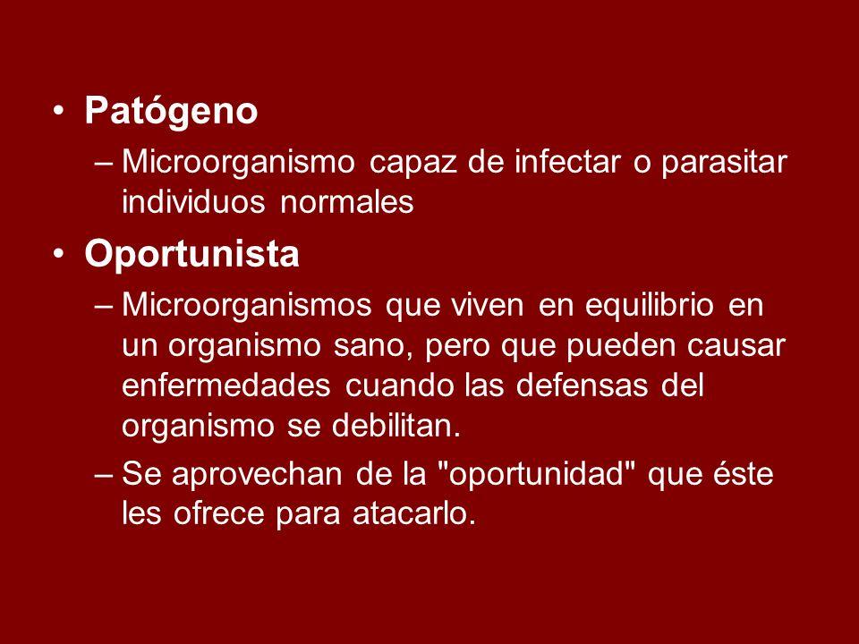 Patógeno Microorganismo capaz de infectar o parasitar individuos normales. Oportunista.