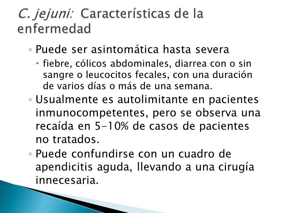 C. jejuni: Características de la enfermedad