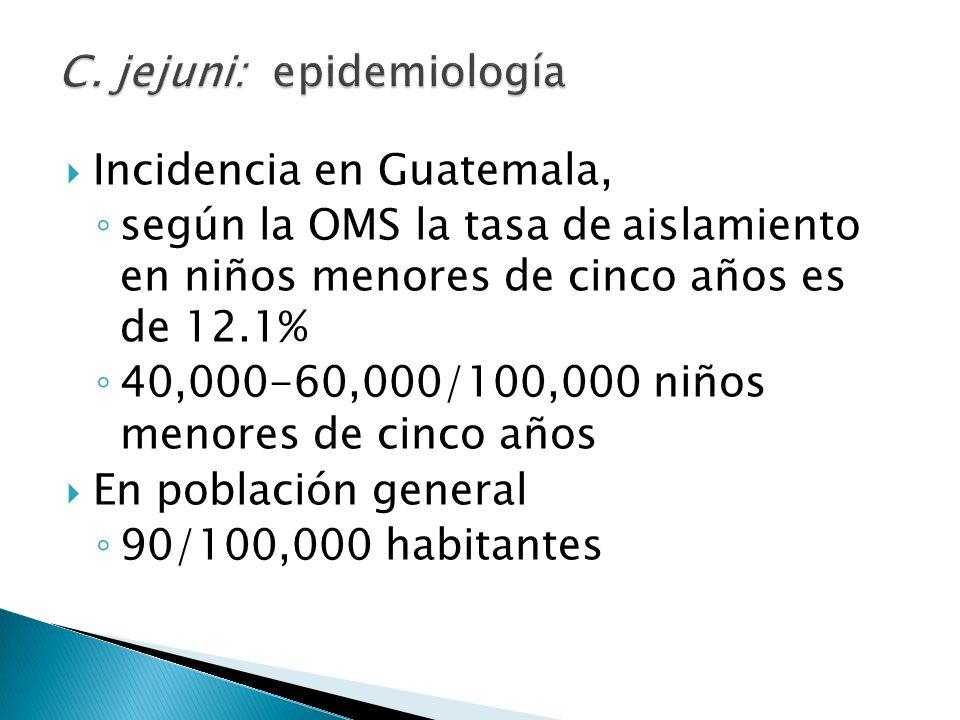 C. jejuni: epidemiología