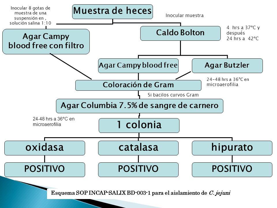Agar Columbia 7.5% de sangre de carnero