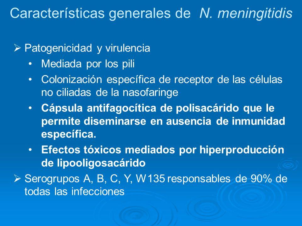 Características generales de N. meningitidis