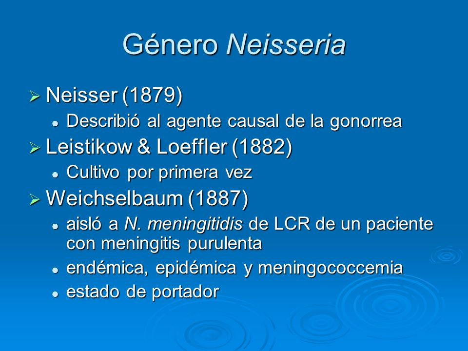 Género Neisseria Neisser (1879) Leistikow & Loeffler (1882)