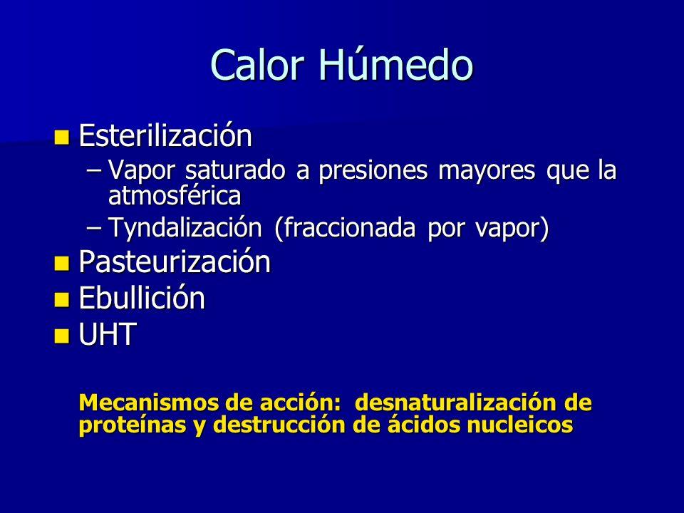 Calor Húmedo Esterilización Pasteurización Ebullición UHT