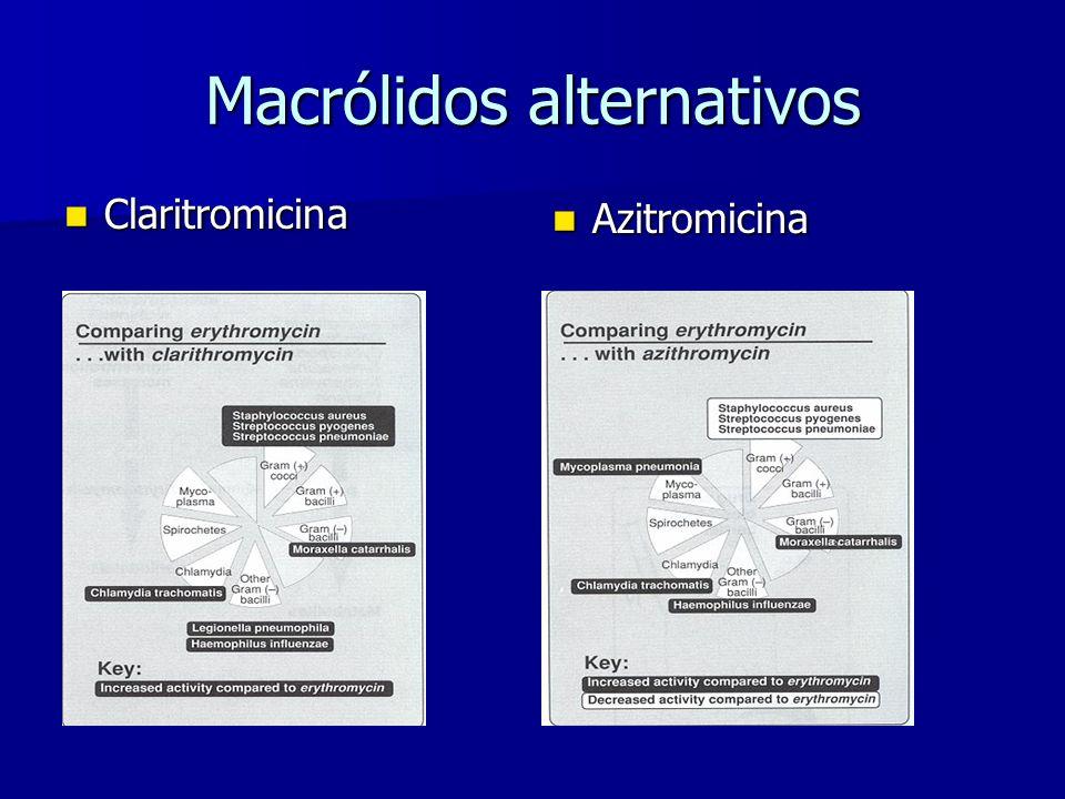 Macrólidos alternativos