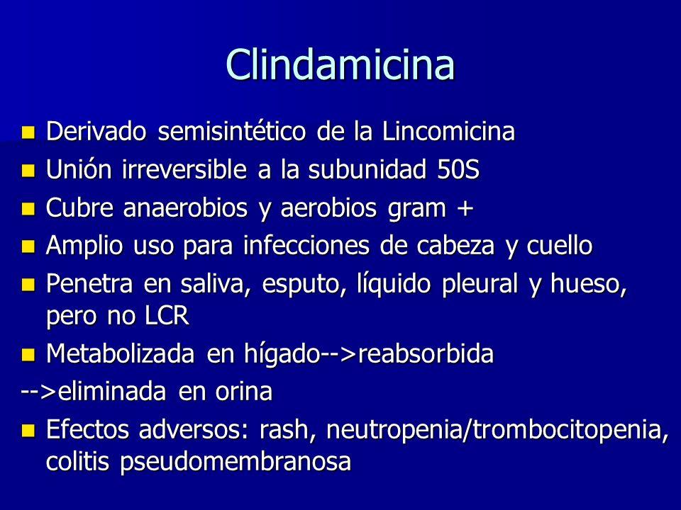 Clindamicina Derivado semisintético de la Lincomicina