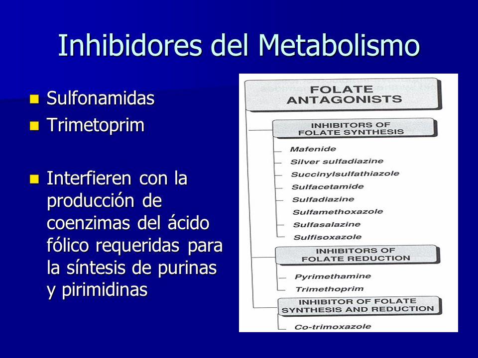 Inhibidores del Metabolismo