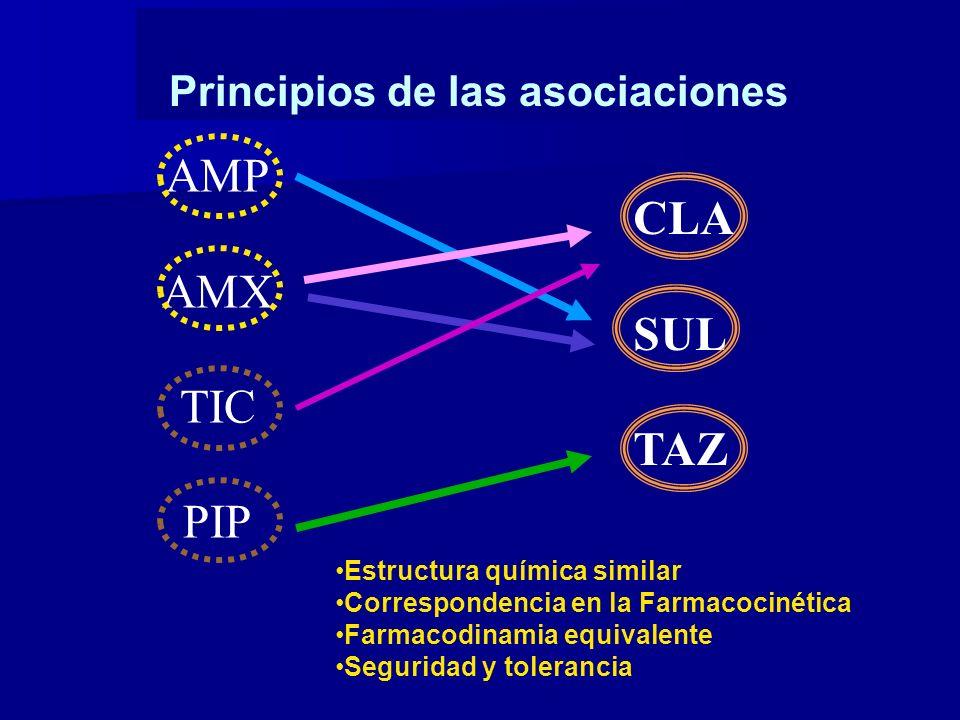 Principios de las asociaciones
