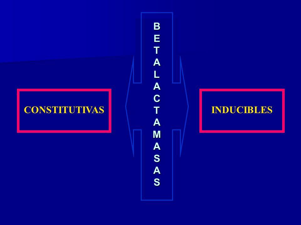 B E T A L C M S CONSTITUTIVAS INDUCIBLES