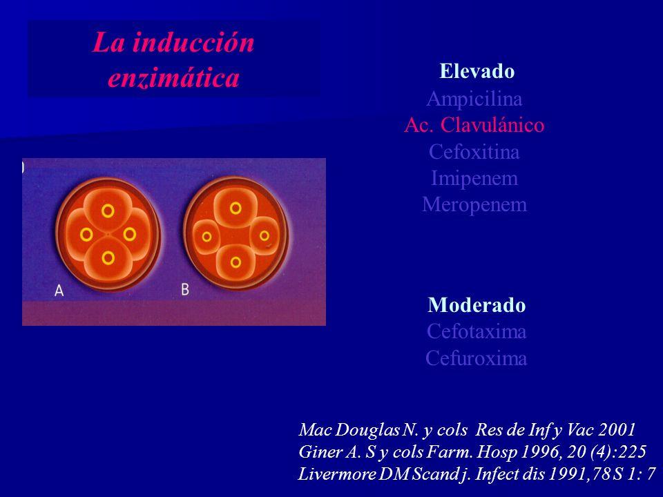 La inducción enzimática