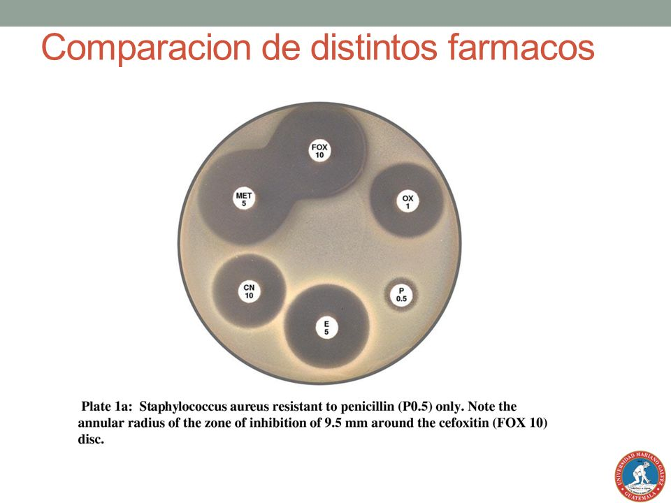 Comparacion de distintos farmacos