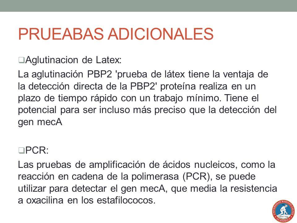 PRUEABAS ADICIONALES Aglutinacion de Latex: