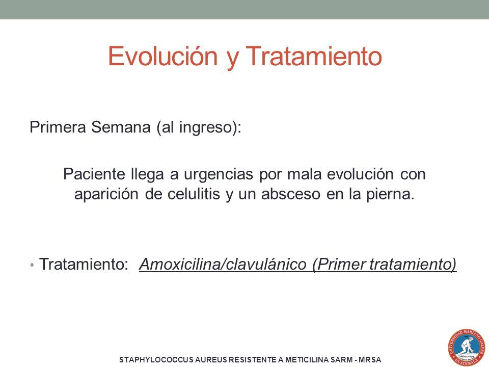 Evolución y Tratamiento