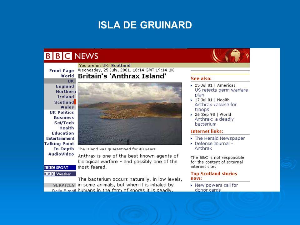 ISLA DE GRUINARD