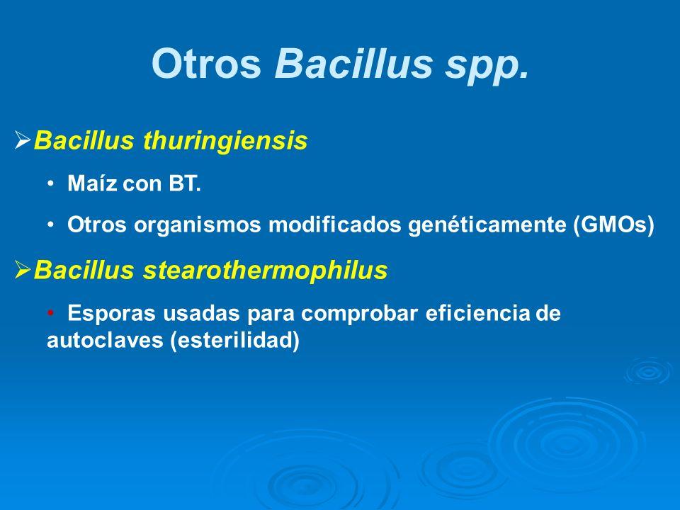 Otros Bacillus spp. Bacillus thuringiensis Bacillus stearothermophilus