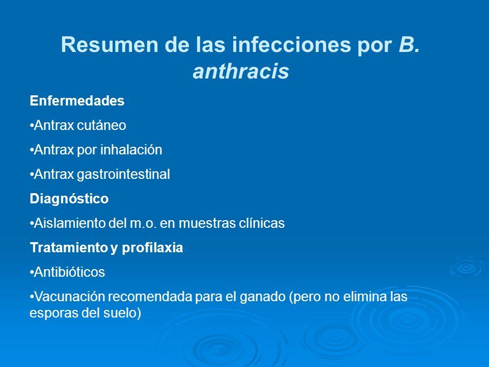 Resumen de las infecciones por B. anthracis
