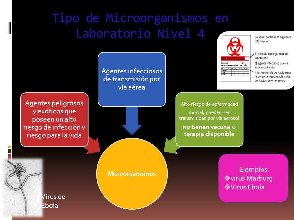 Tipo de Microorganismos en Laboratorio Nivel 4