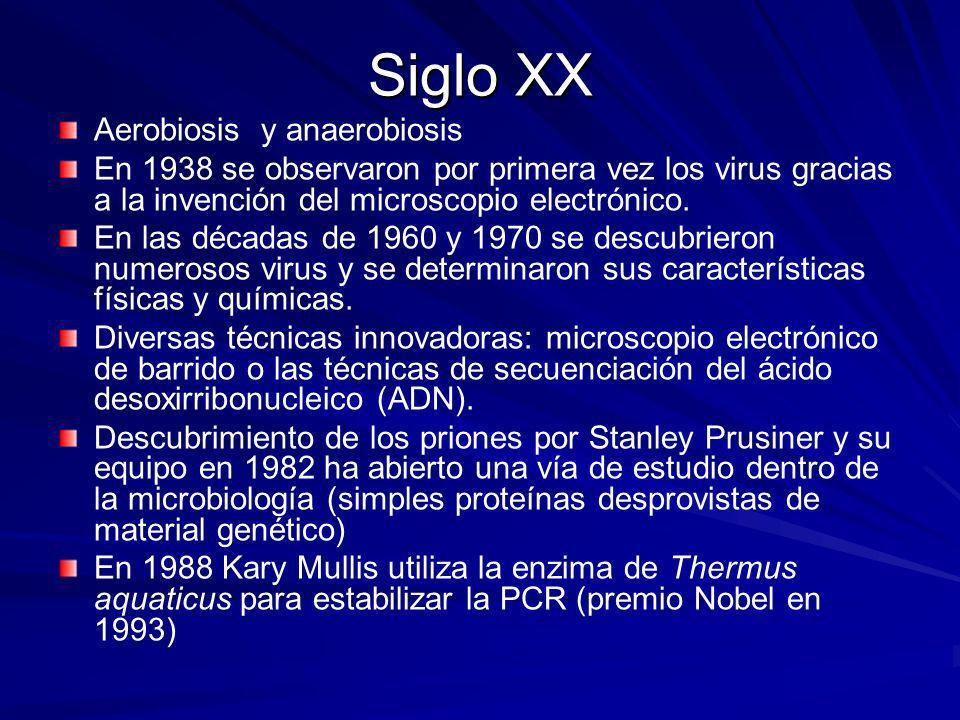 Siglo XX Aerobiosis y anaerobiosis