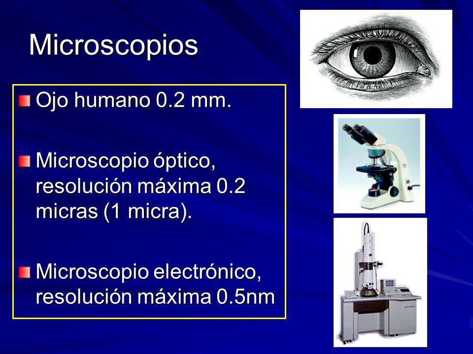 Microscopios Ojo humano 0.2 mm.