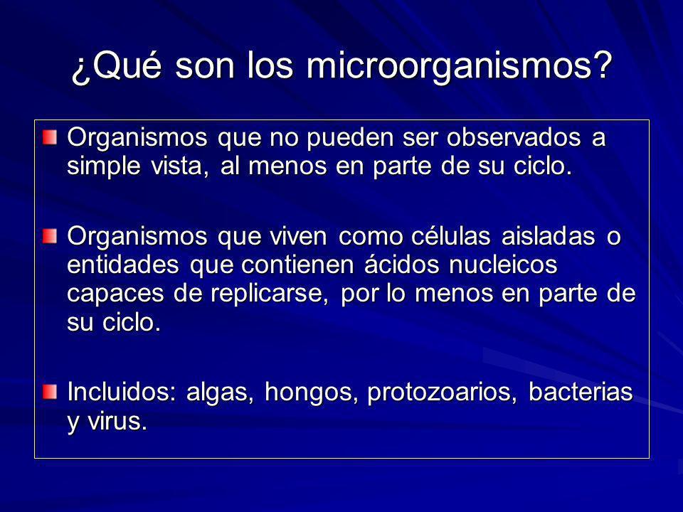 ¿Qué son los microorganismos