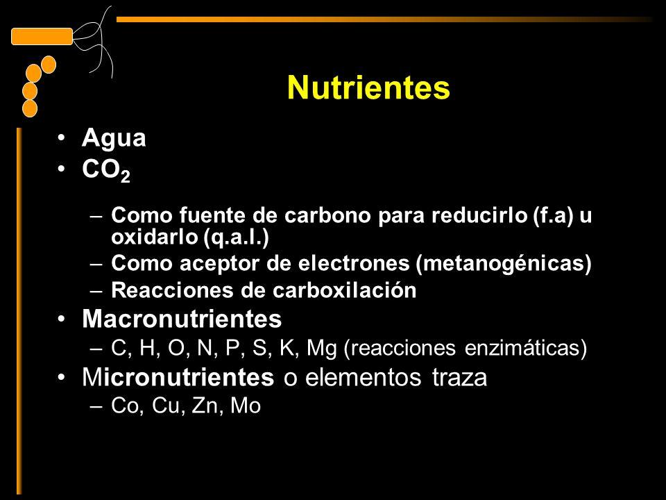Nutrientes Agua CO2 Macronutrientes Micronutrientes o elementos traza