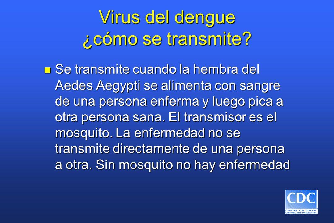 Virus del dengue ¿cómo se transmite