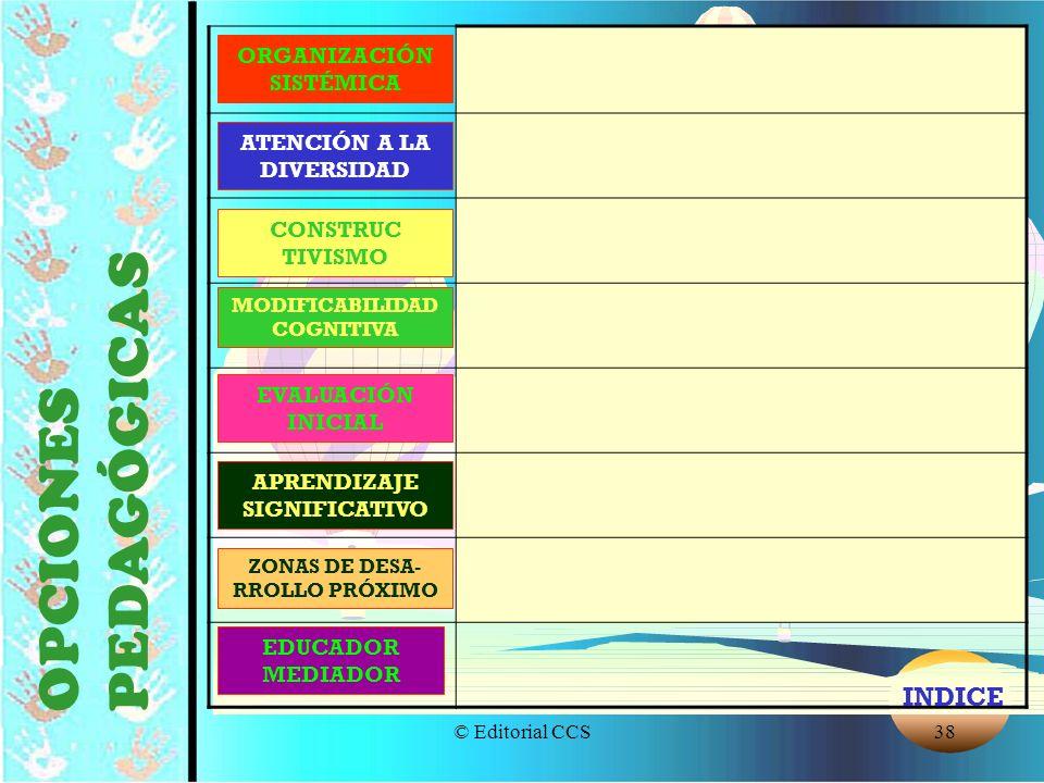 OPCIONES PEDAGÓGICAS INDICE ORGANIZACIÓN SISTÉMICA