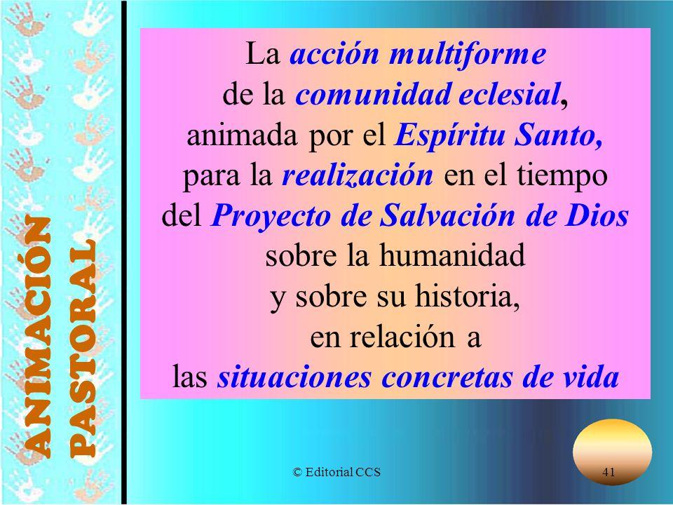 ANIMACIÓN PASTORAL La acción multiforme de la comunidad eclesial,