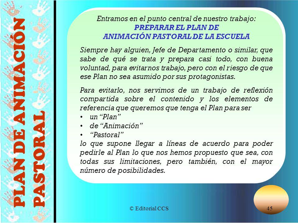 PREPARAR EL PLAN DE ANIMACIÓN PASTORAL DE LA ESCUELA