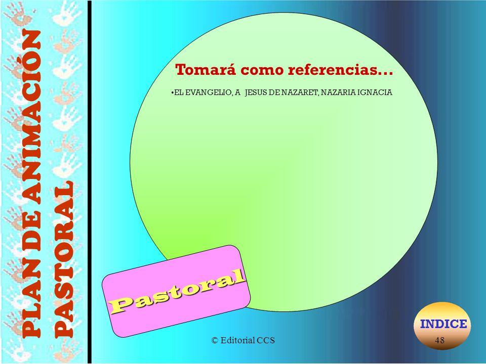 PLAN DE ANIMACIÓN PASTORAL